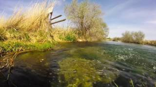 GoPro Hero Wilson Ponds Trout Nampa