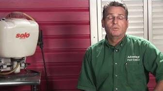 Pest Control : How to Kill Fleas
