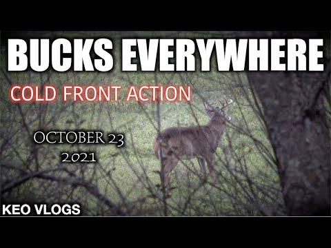 Download October 23 OR November 1st!? BEST HUNT SO FAR!