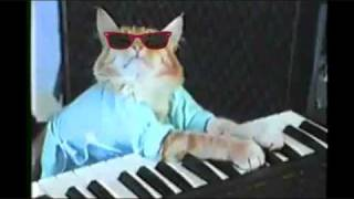 Keyboard Cat TECHNO REMIX!!!