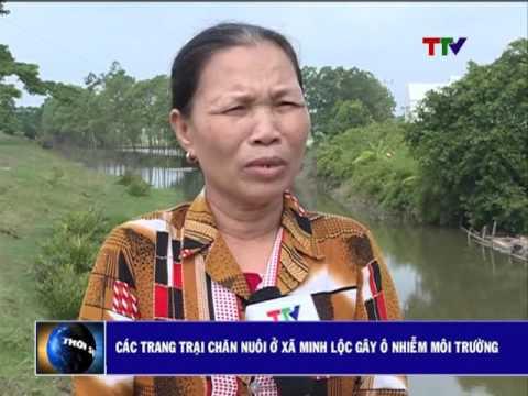 Các trang trại chăn nuôi ở xã Minh Lộc gây ô nhiễm môi trường