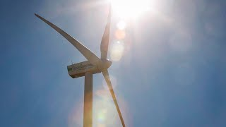 Wind power may actually warm climate in the short term: Study