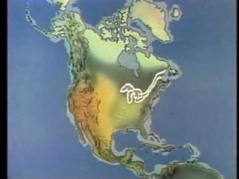 North America Growth of a Continent 1980