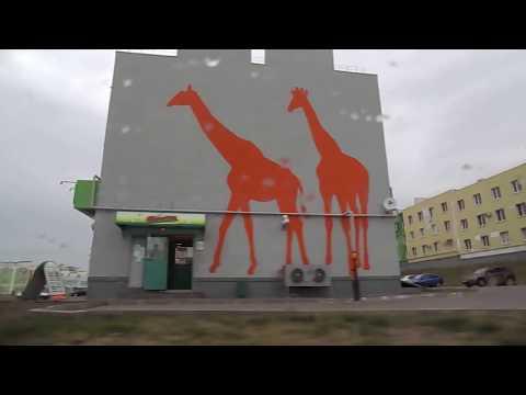 Микрорайон КОШЕЛЕВ - проект Жилой комплекс 22 августа 2018, Самара