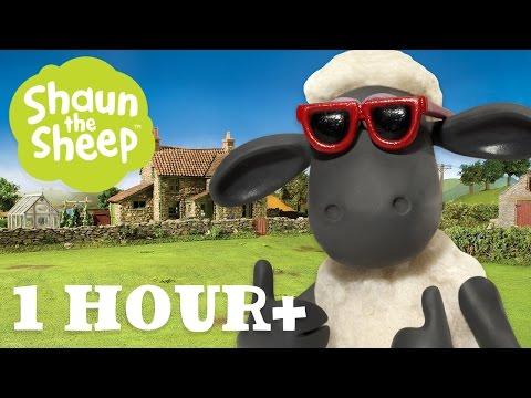Những Chú Cừu Thông Minh - Tập 02 [một giờ]
