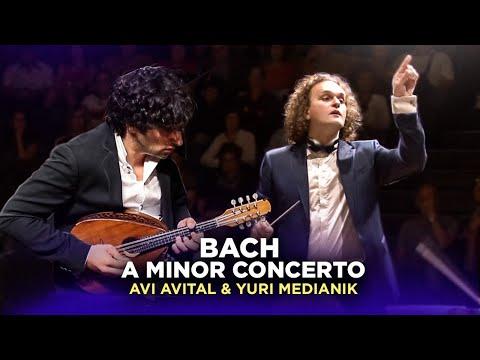 Bach. A Minor Concerto (3mov). Avi Avital, Israel Camerata, Yuri Medianik