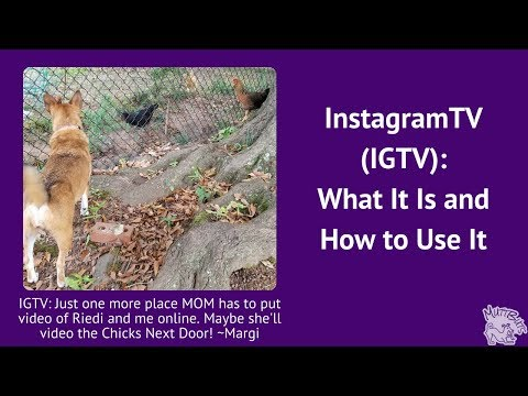 What is Instagram TV (IGTV)?