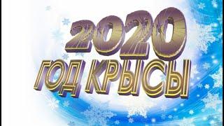 Футаж 2020 год крысы Footage 2020 happy New Year Figure 2020 Year of rat