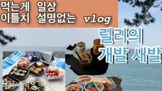 [브이로그]릴리의 개발 새발 이틀치 vlog, 김밥 만…