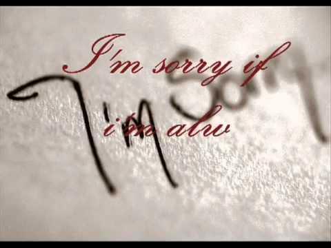 I'm Sorry - Jamie Rivera.flv