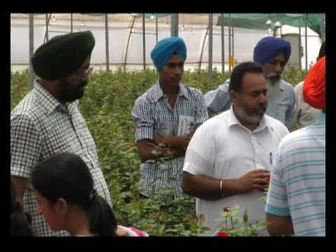 2 साल एक पड़ताल - वाह किसान | Wah Kisan - Success Story - 19 (Spot)