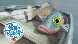 Peter Rabbit - Peter and a Fish   Cartoons for Kids