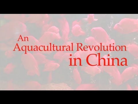 An Aquacultural Revolution in China