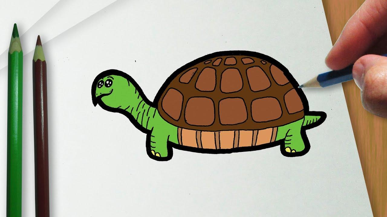 Como Desenhar Uma Tartaruga Kawaii Youtube