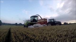 Last of the silage and wholecrop year 2015 in Northern Ireland