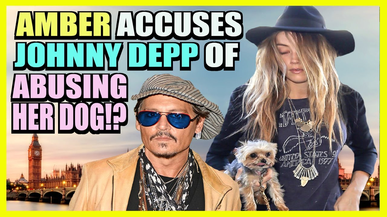 Amber Heard and the Sun Accuse Johnny Depp of DOG Abuse!