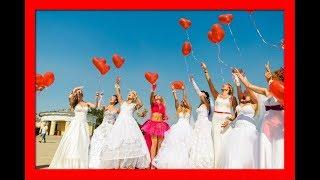 Свадьба в малиновке!)Wedding in the robin!)