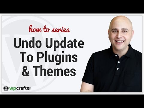 How To Rollback Undo A WordPress Theme Or Plugin To A Prior Version