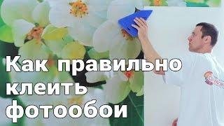 Как правильно клеить фотообои - СИМФОНИЯ(http://simfoniya-oboi.ru/, 2016-04-06T12:05:05.000Z)