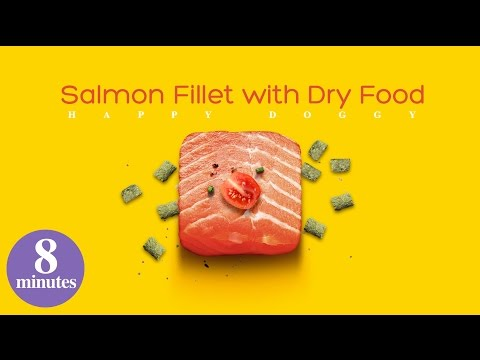 salmon-fillet-with-dry-food-8-minutes-homemade-dog-food