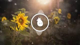 Post Malone &amp Swae Lee - Sunflower (Romen Jewels Remix)
