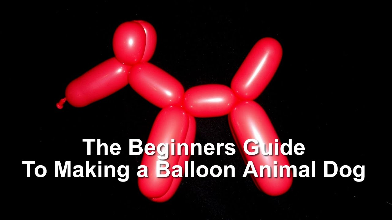 image about Balloon Modelling Instructions Printable identify The Newcomers Consultant toward Developing a Puppy Balloon Animal