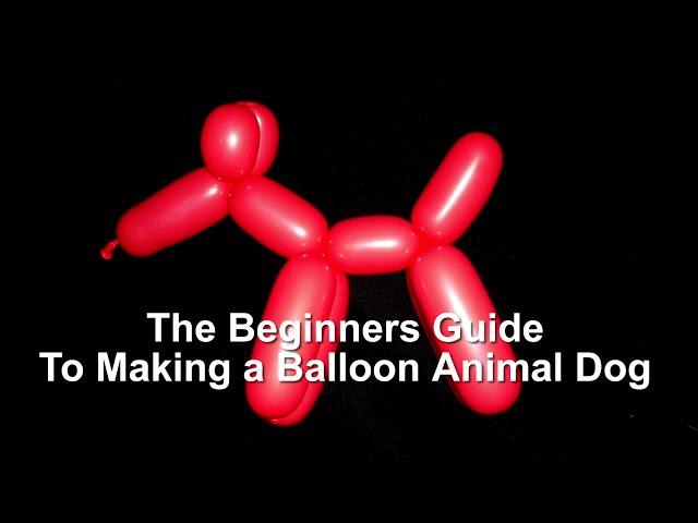 4 Ways To Make Balloon Animals Wikihow