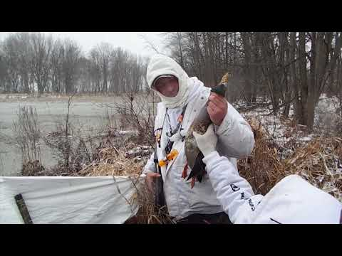 Duck Hunting '' Icy Mallard Hole ''