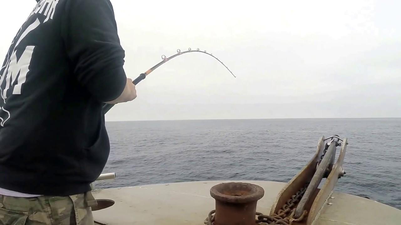 Ventura sportfishing pacific eagle white seabass youtube for Ventura sport fishing