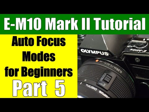 Olympus E-M10 II: Autofocus Modes for Beginners Part 5 ep.90