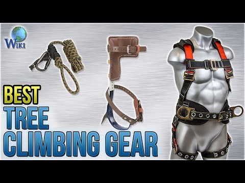 10 Best Tree Climbing Gear 2018