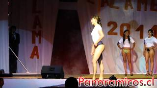 Repeat youtube video Verano Calameño 2011 Miss Colales Panoramicos.cl