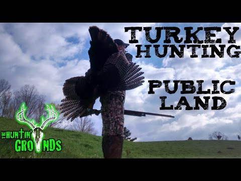 Turkey Hunting Public Land In Georgia Mountains : S7 #11