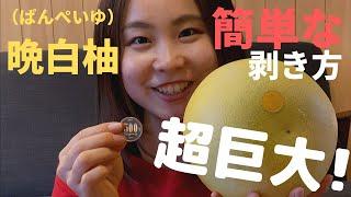 【晩白柚食べ方】ギネス記録を持つ「晩白柚」の簡単な食べ方!どんな味?晩白柚皮は食べれるの?糖度は?