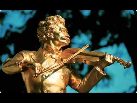 Johann Strauss II -  An Artist's Life