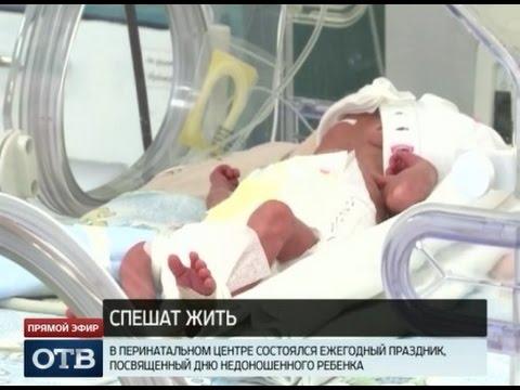 Продажа павлинов в России. Купить павлина