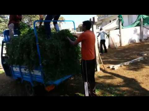 Shree Navjivan Jivdaya Group Mandvi Kutch