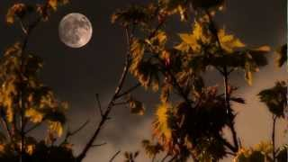 Relaxing Music, Moon, Sky, Mystical and Magical Spring Sunset Finale by Steve Slavin