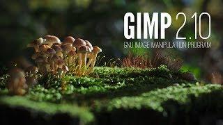 Gimp 2.10 - Co nowego?