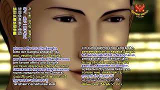0593 AP P38 Shakyamuni Buddha 6m