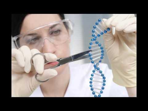 Human Genetic Modification Team 94