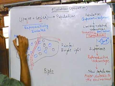 Evolution part 5, speciation 1 (mechanism of speciation, allopatric speciation)