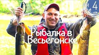 Рыбалка в Весьегонске 9 дн Крупные щуки на спиннинг на воблер окунь на отводной поводок День 4
