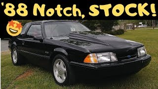 Stock 88 Mustang LX NotchBack Review *For Sale*