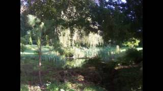 J S Bach: Allemande D-Major Partita BWV 828, Robert Hill Harpsichord
