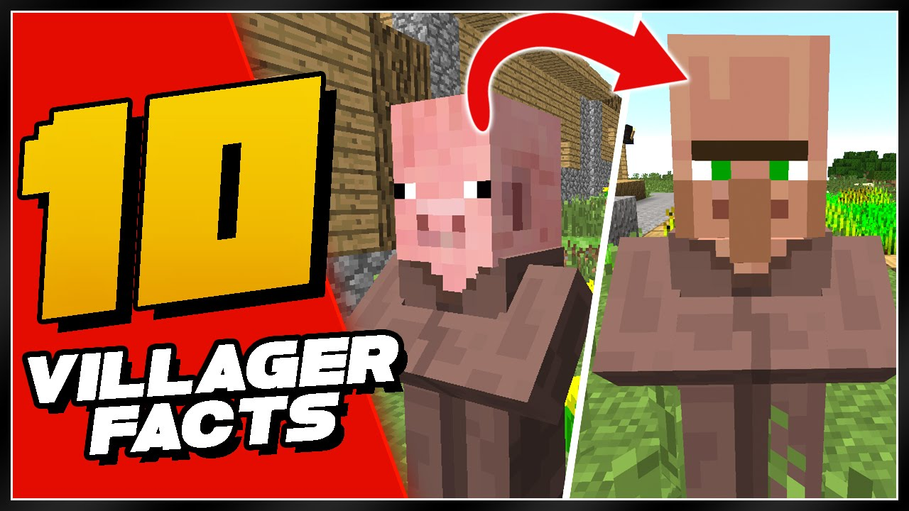 10 minecraft things you didn 39 t know about villagers youtube. Black Bedroom Furniture Sets. Home Design Ideas