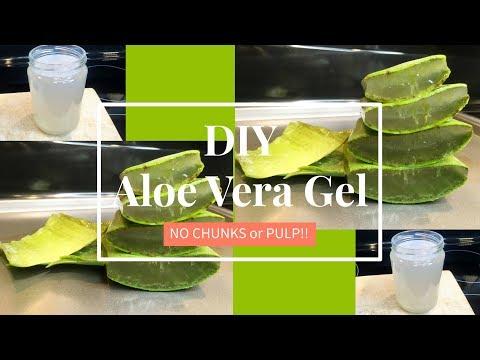 Homemade Aloe Vera Gel (NO CHUNKS!) | DIY | TheLifestyleLuxe - YouTube