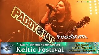 Paddy and the Rats - Freedom - Keltic Festival Schloss Hohenli…