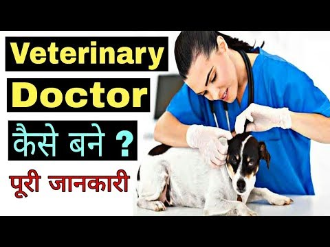 How To Become A Veterinary Doctor In India || Bachelor Of Veterinary Science [B.V.Sc] Details ||