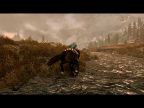 Elder Scrolls V: Skyrim - Video
